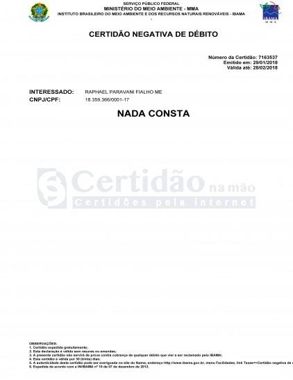 Certidão Negativa Ambiental do IBAMA (Federal)
