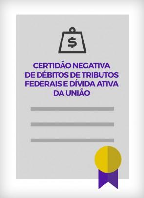 Certidão Negativa de Débitos de Tributos Federais e Dívida Ativa da União